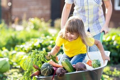 little funny girl inside wheelbarrow with vegetables in the garden