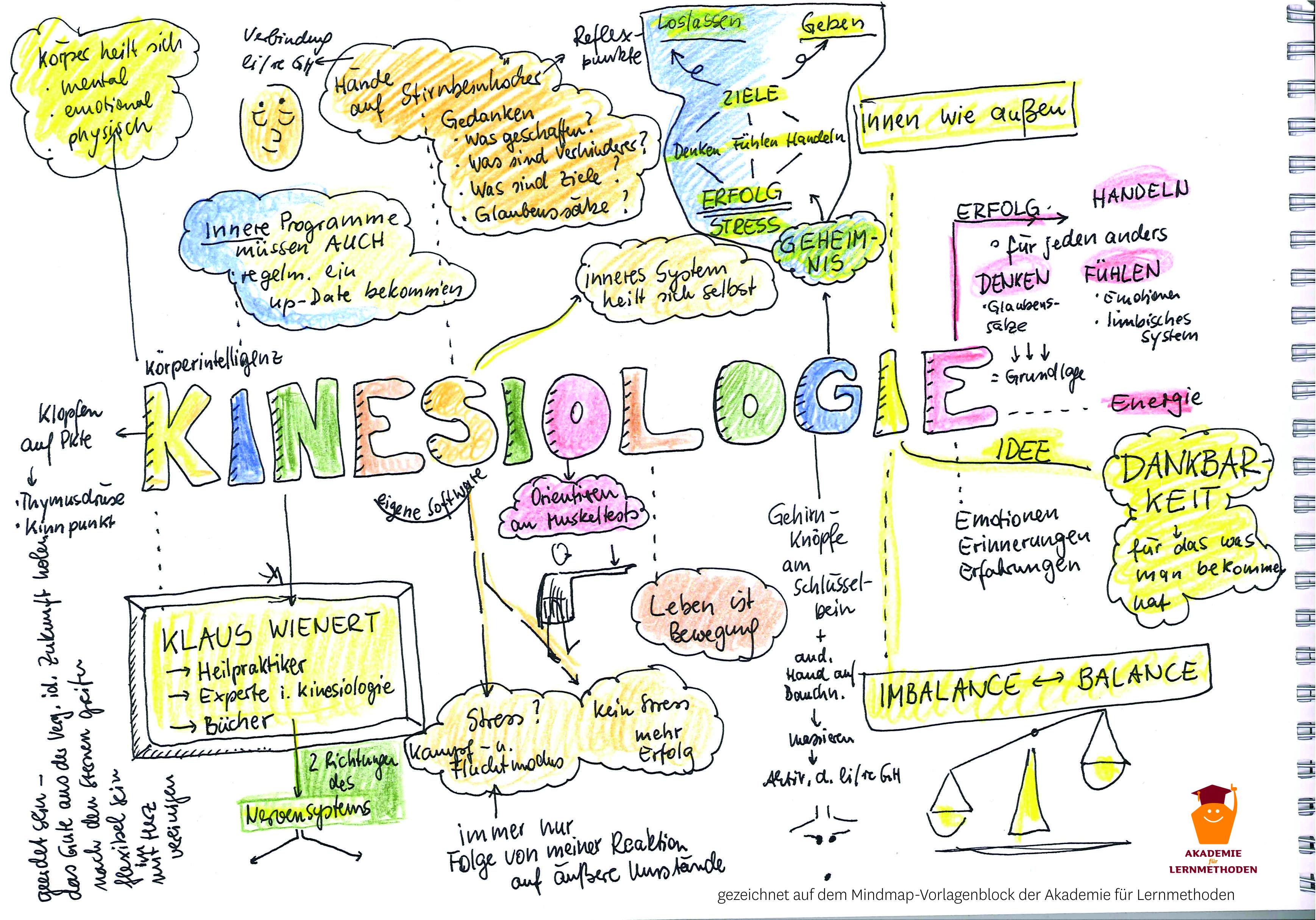 KAWA-Seminar-Mitschrift, Thema: Kinesiologie
