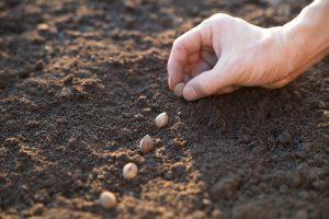 Samen für Studium durch moderne Lernmethoden